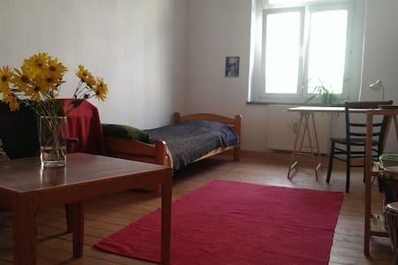Freundliches WG-Zimmer - Apartemen