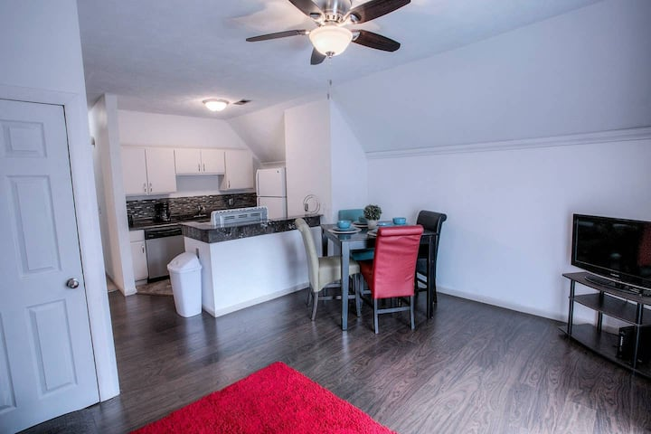 Spacious Apartment near Downtown / Midtown