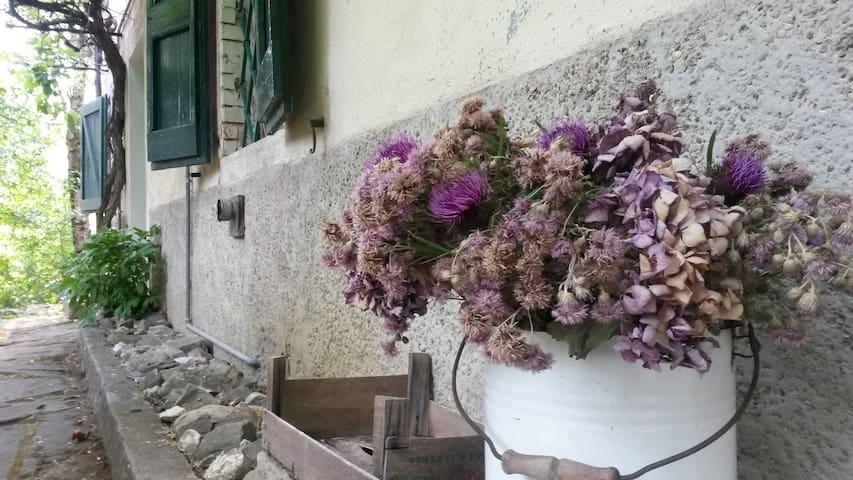 ospitale dei pastori - Roncopianigi - Ev