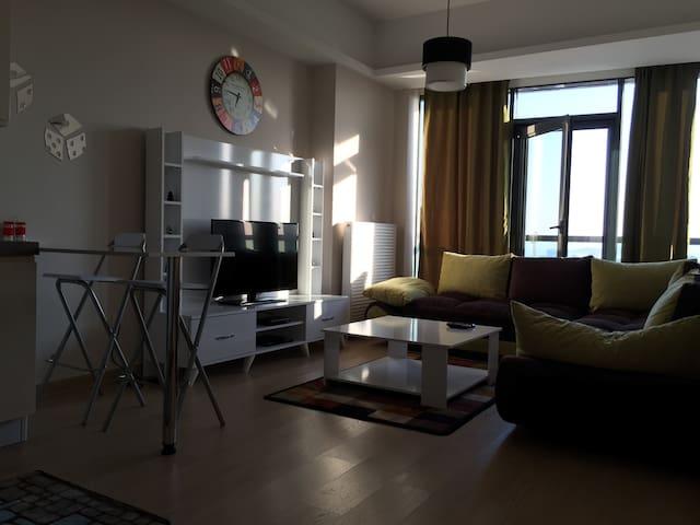 Wiking Home - Ataşehir - Departamento