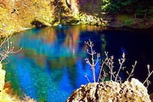 Tamolich Blue Pool