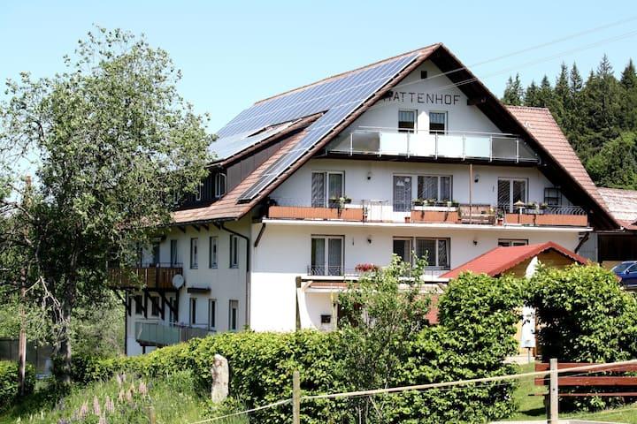 Ruim vakantie-appartement op een rustige locatie met balkon