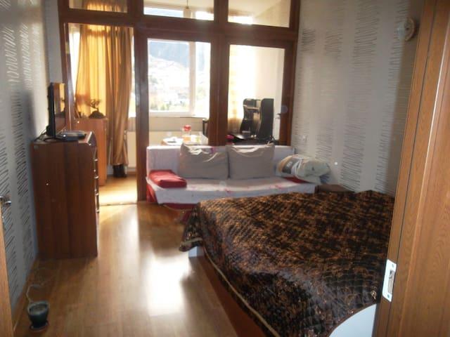 Borjomi Mtiskheoba - Borjomi - Apartamento