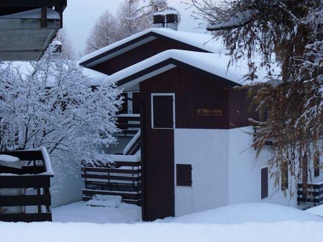 Appartamento immerso nella natura in Nevegal - Belluno - Pis