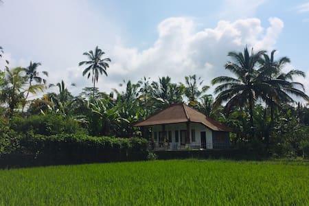 Pondok Rani in Taro: Farmhouse