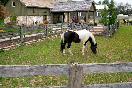 Stone Ridge Farm - Guesthouse