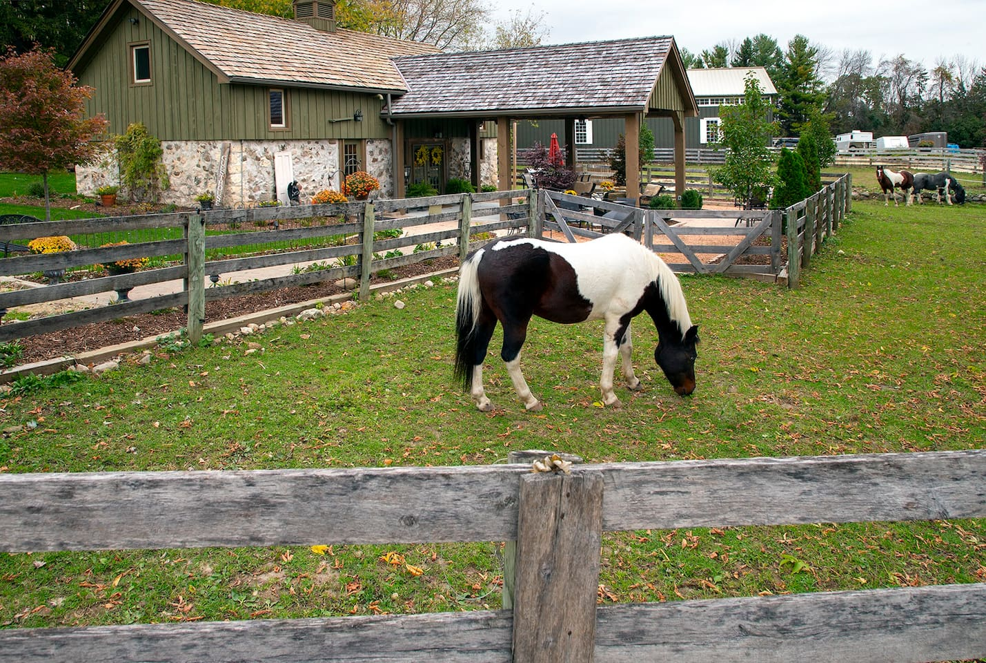 """Welcome to the Guesthouse on Stone Ridge Farm, please make yourself at home. """"Orion"""" may welcome you, some time during your stay."""