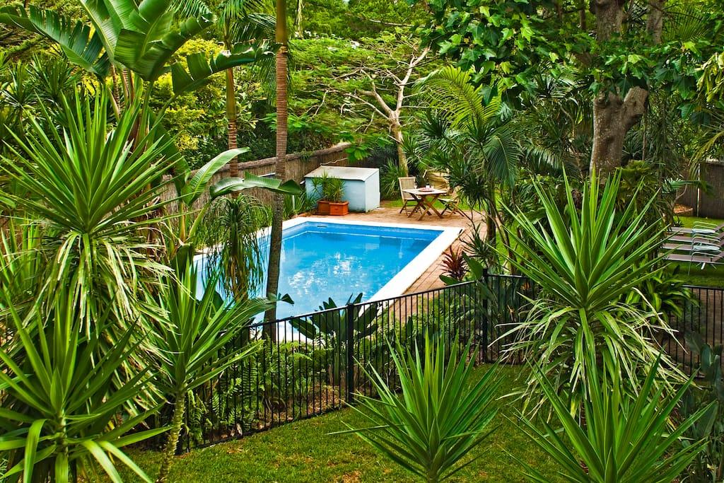 Lush gardens, heated pool