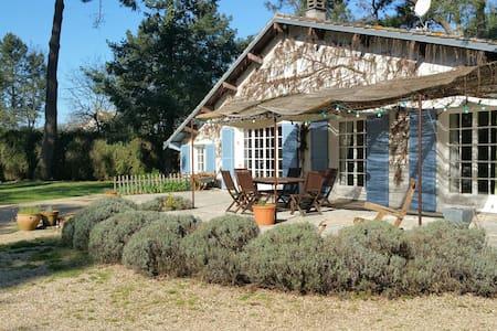 Dans un parc boisé chambre privée avec salle d'eau - Veigné - Guesthouse