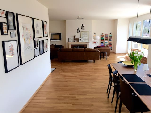 vitra. apartment with fire place - Базель - Квартира