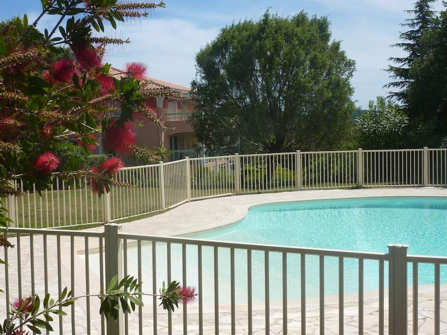 Grande piscine à 15m de l'appartement