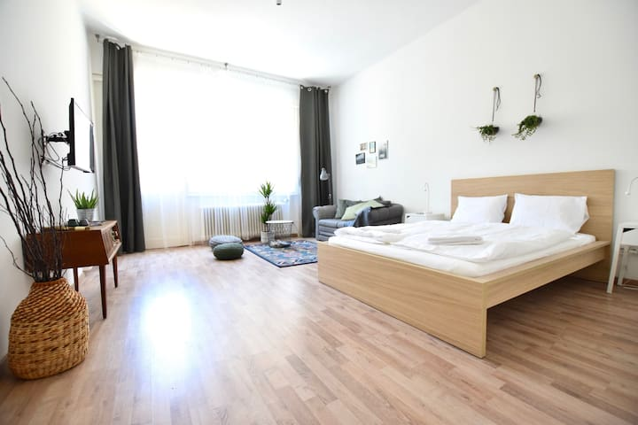 Hi5 Apartments 102- Charming Studio in the center