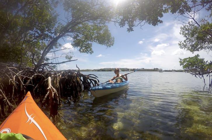 Cute Budget Traveler Sailboat with Kayak(s)