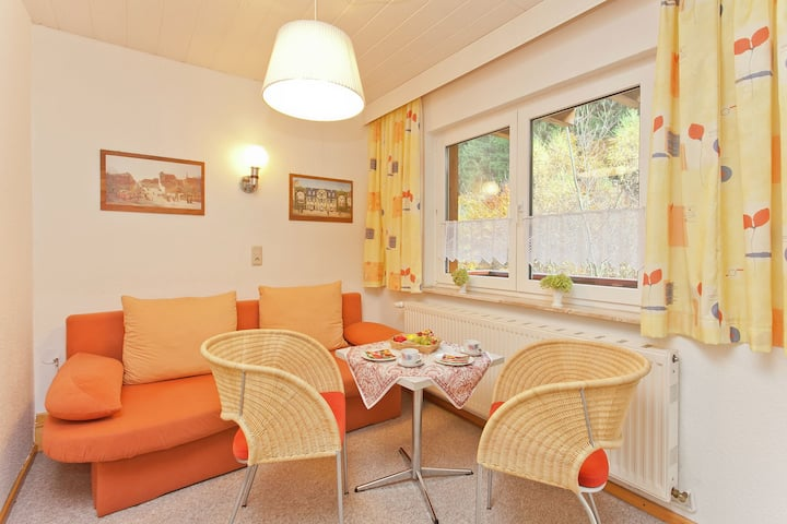 Luxurious Apartment in Heubach Germany in the Forest