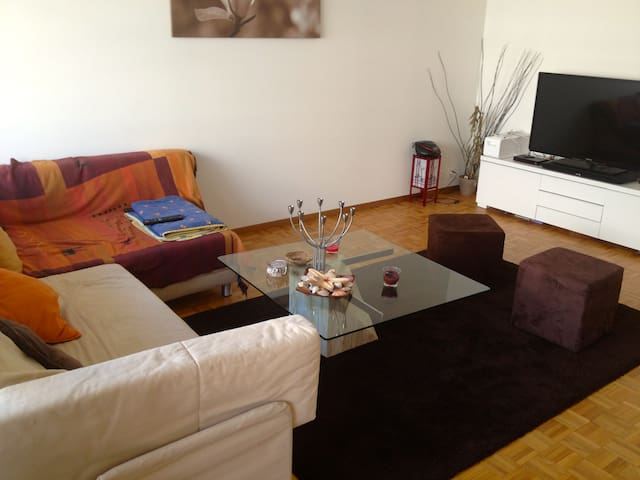 modern quiet double room - Carouge - Apartment