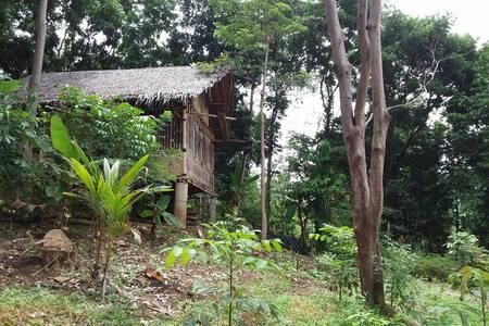 Bamboo House for Backpacker