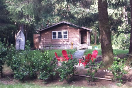 Little Cedar Cabin in the Woods by the Sea - Taholah / Moclips - Kabin