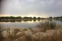 Bravo à Jacky pour cette sublime photo du Lac de Salonique, à 100 m du studio, prise en Juillet 2017!