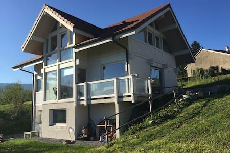 Maison en bois à 20 km de Genève - Pougny