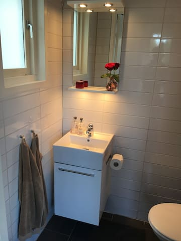 Toilet entrance level