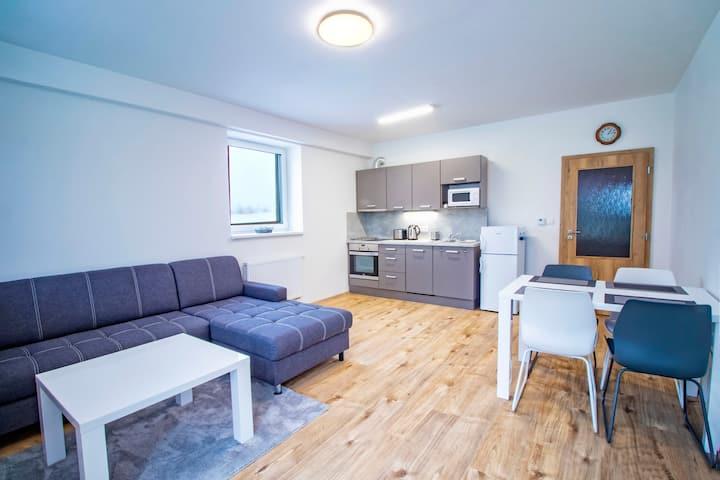 One Bedroom Apartment in Klinovec Views (102)