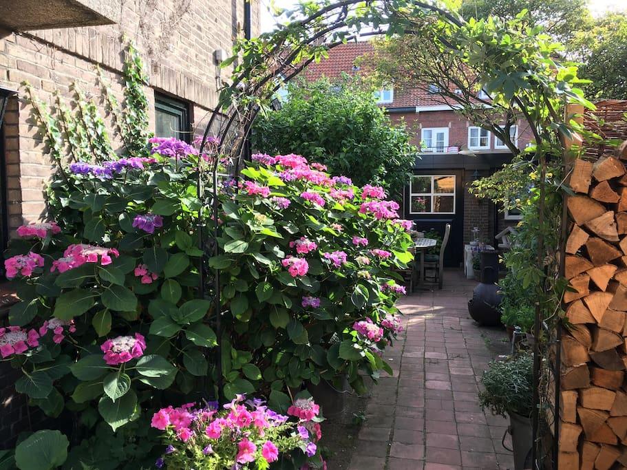 gartenhaus garden cottage with private terrace. Black Bedroom Furniture Sets. Home Design Ideas