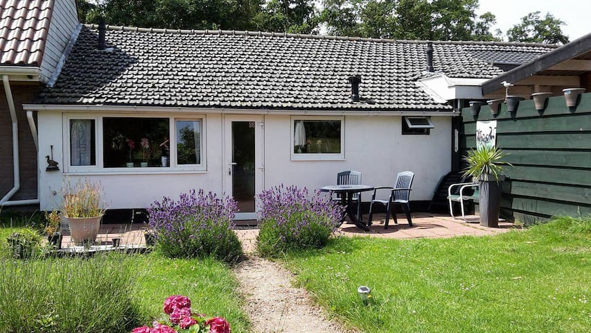 B&B Little Creek Cottage, unieke ligging! - Renesse - Kabin