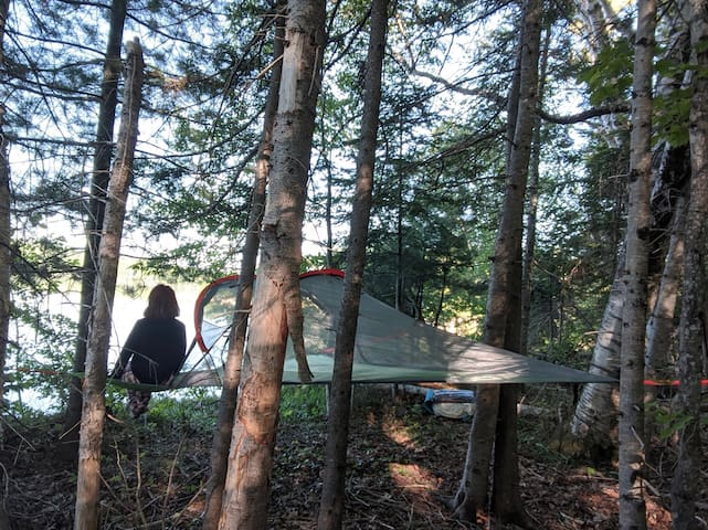 Tree Tent Glamping