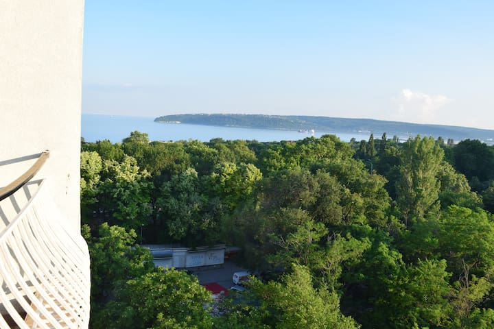 Apartment in Varna near to Sea garden Delfinarium