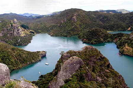 Rural outlook by Whangaroa Harbour - Kaeo - Wikt i opierunek