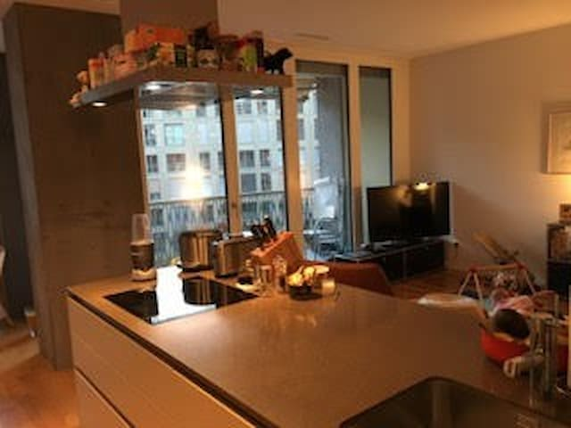CORE of Zurich - Privacy, Space and an Mount View! - Zürich - Appartement