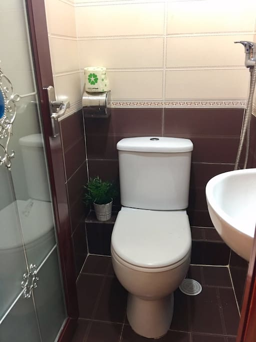 Private toilet & shower hose