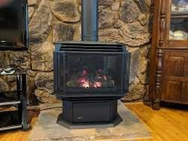 New 2019 Natural Gas Fireplace