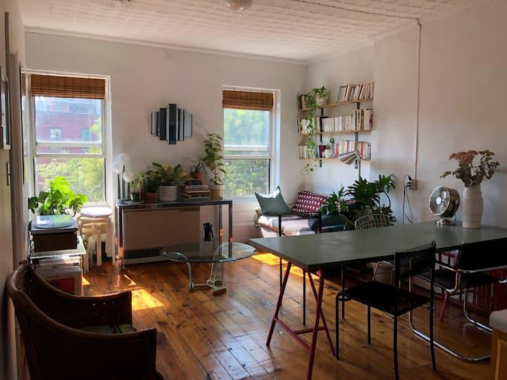 Cute private room in Williamsburg