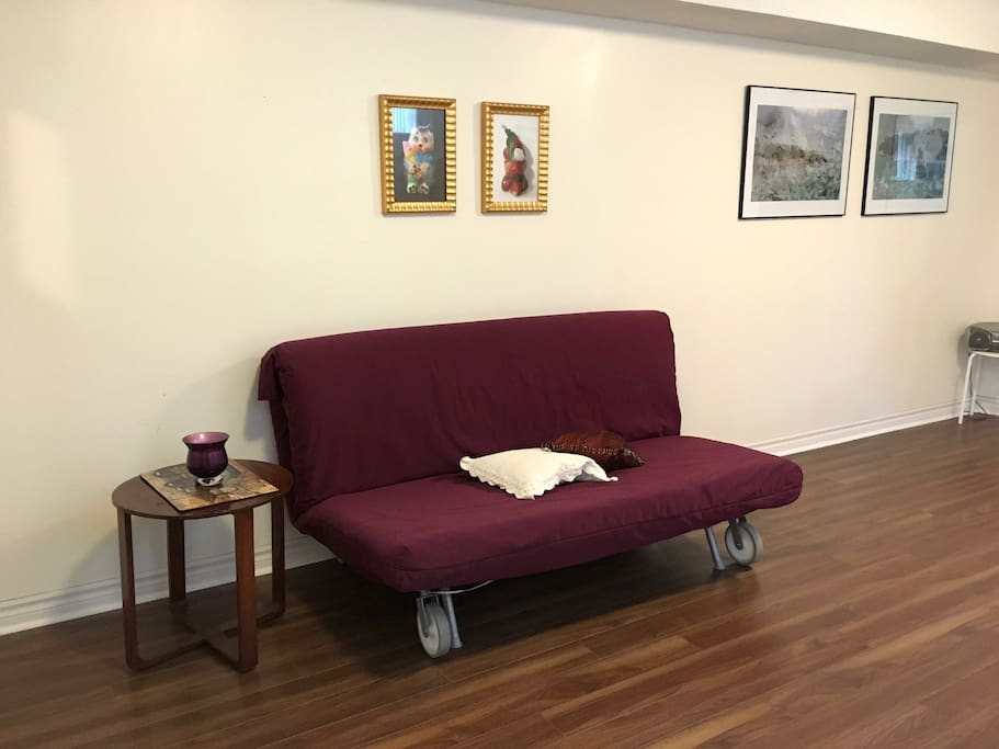 Main living space with pull-out couch