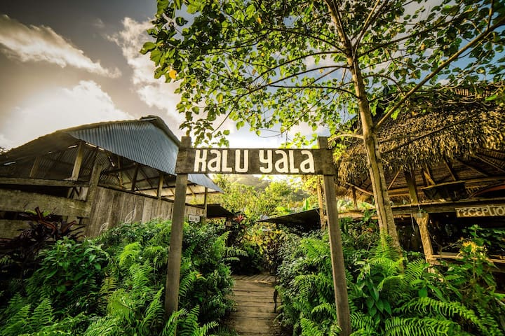 Kalu Yala a Sustainable Town in the  Rainforest