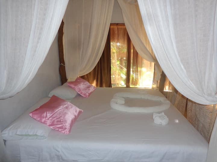 Romantic Cavaña in the Jungle