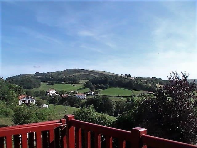 Nice apt with mountain view & Wifi