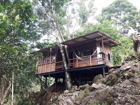 Cabaña vista al mar y selva tropical PLAYA ALMEJAL