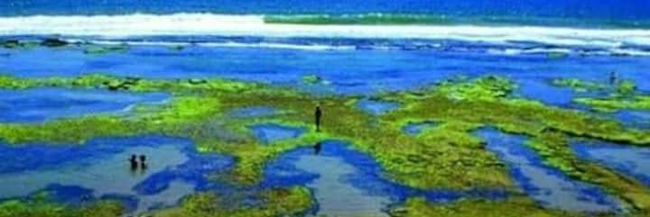 Ampla Suite Independente  vista  praia de Ipitanga