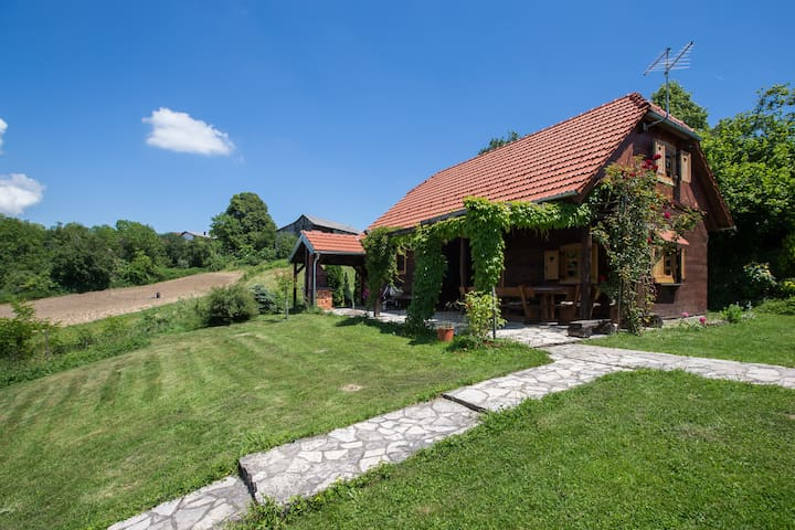 Peacefull family cottage - Prhoć - Casa