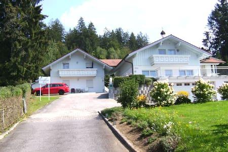 Ferienhaus Arberblick Ludwigsthal 1