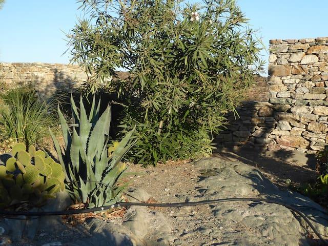 Le jardin des roches