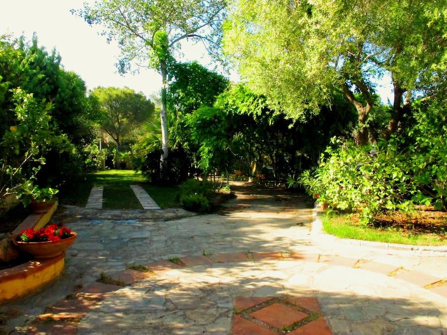giardino lato strada d'ingresso