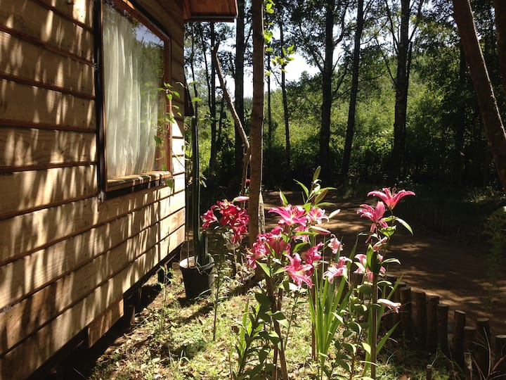 Eco-Cabañas Quetroleufu, Cabaña para 2
