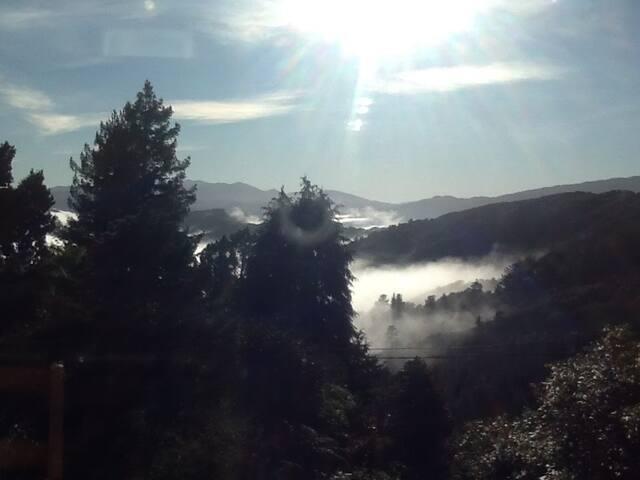 Blue Mountains Retreat