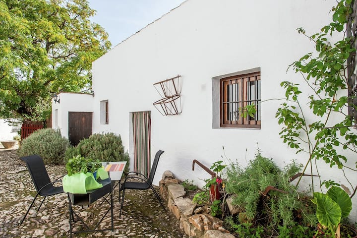 Vintage Farmhouse in Algarinejo with Terrace