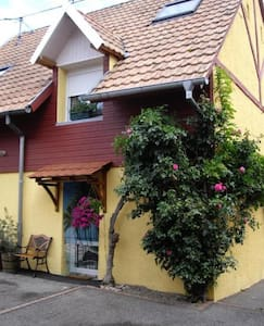 Gîte Alsacien au pied des Vosges & route des Vins.
