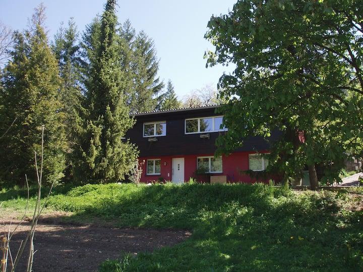 2-Zimmerwohnung im Grünen
