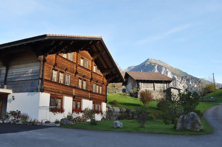 Apartment Geissholzli